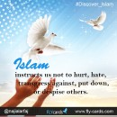 Islam instructs us not to hurt, hate, transgress against, put down, or despise others.