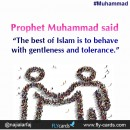 "Prophet Muhammad said: ""The best of Islam is to behave with gentleness and tolerance."""