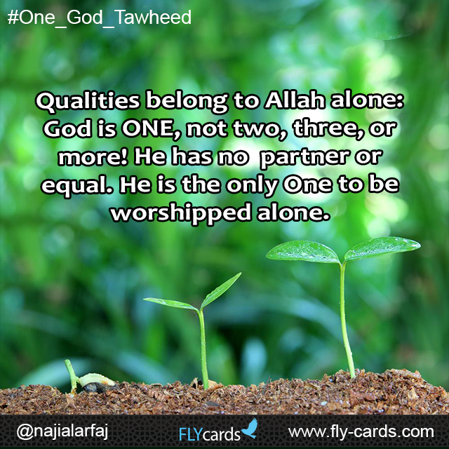 Qualities belong to Allah alone: God is ONE, not two, three, or more! He has no partner or equal. He is the only One to be worshipped alone.