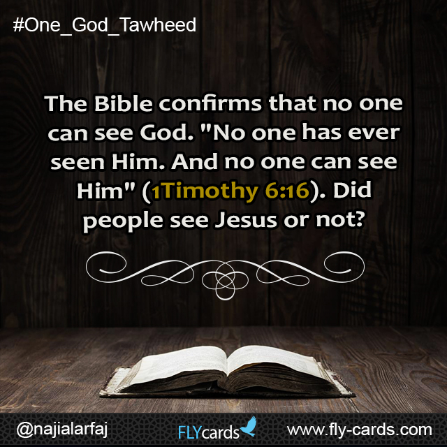 "The Bible confirms that no one can see God. ""No one has ever seen Him. And no one can see Him"" (1Timothy 6:16). Did people see Jesus or not?"