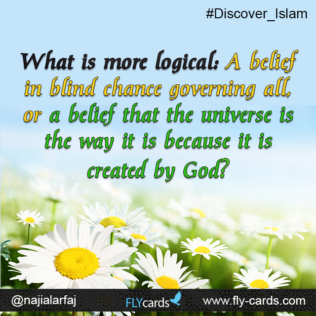 What is more logical: A belief in blind chance governing all, or a belief that the universe is the way it is because it is created by God?