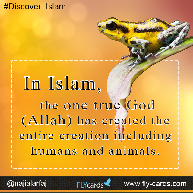 What is the ultimate truth in Islam?